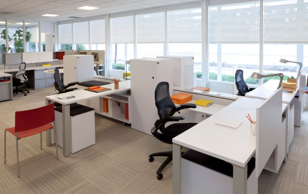 6 Ways to Divide Your Office Workspace for Greater Efficiency