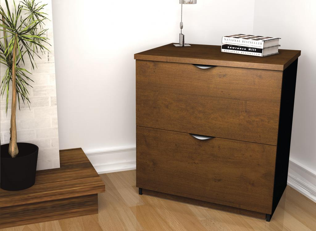 Lateral file cabinet with plant in a home office