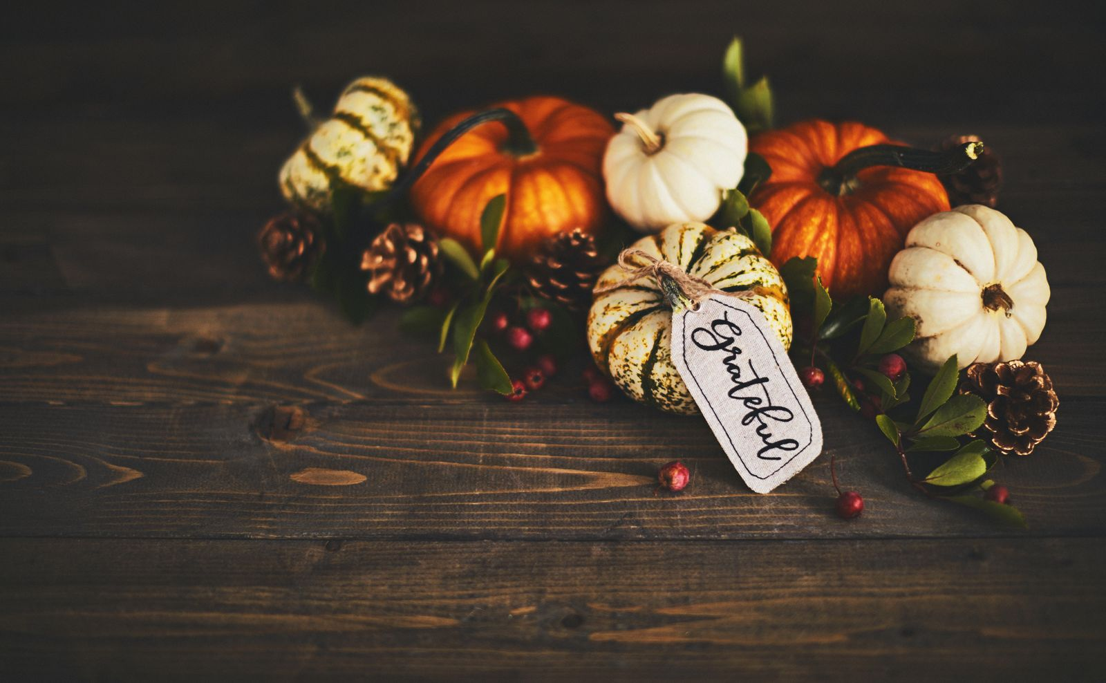Thanksgiving 2020: Sharing Tremendous Gratitude Amidst the Ongoing Uncertainty